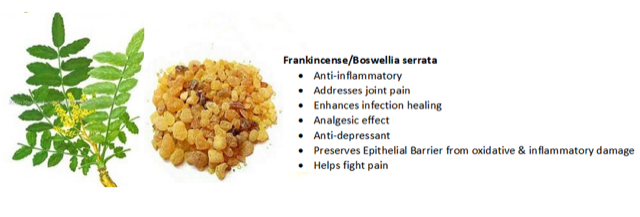 Frankincense-Infographic-Apex-Health