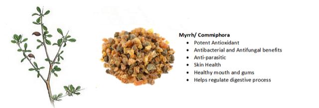 Myrrh-Infographic-Apex-Health