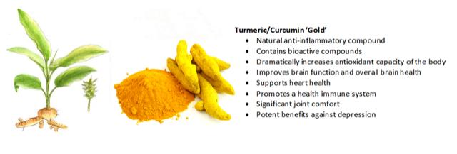 Tumeric-Infographic-Apex-Health